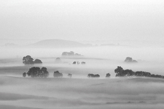 Ground mists around Alsop-en-le-Dale